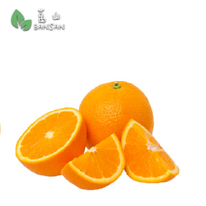 Penang Grocery Store Online Next Day Delivery is Offering South Africa Orange 南非肉橙