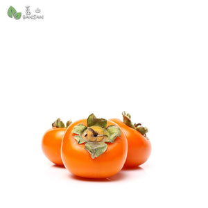Penang Grocery Store Online Next Day Delivery is Offering Korea Persimmons 柿子 (9 pieces per pack)