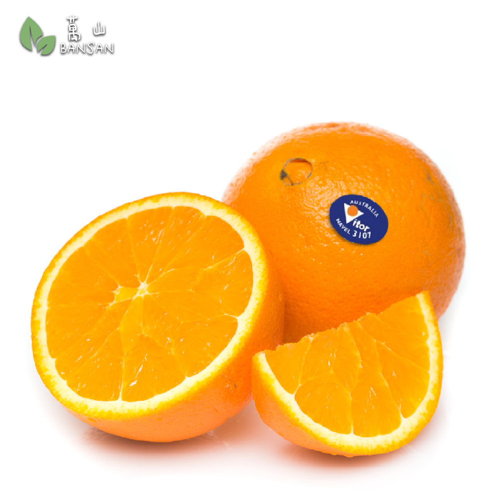 Australia Sunskist Navellate Orange 澳洲肉橙 - Bansan Penang