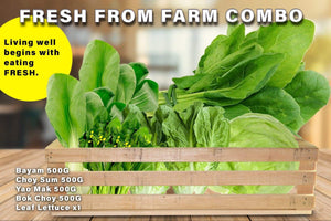 Penang Grocery Store Online Next Day Delivery is Offering Fresh from Farm Combo