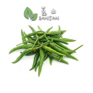 Penang Grocery Store Online Next Day Delivery is Offering Birdeye Chilli (Cili Padi) 辣椒仔 (1 Pack ~ ±100g)