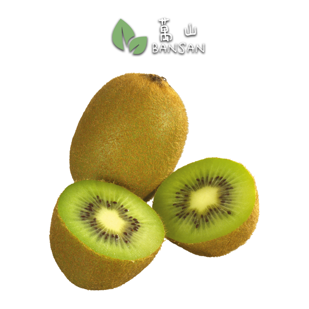 Penang Grocery Store Online Next Day Delivery is Offering Turkey Green Kiwi 土耳其奇异果 (5 Pcs)