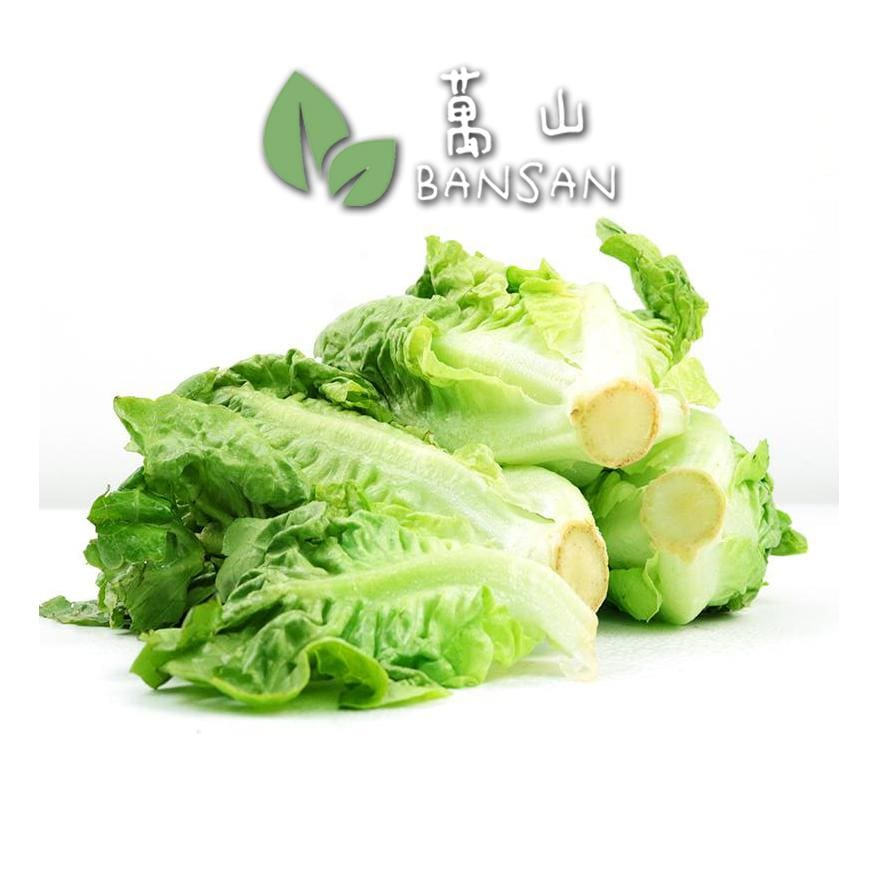 Penang Grocery Store Online Next Day Delivery is Offering Romaine Lettuce (Yau Mak) 油麦 (±500g)