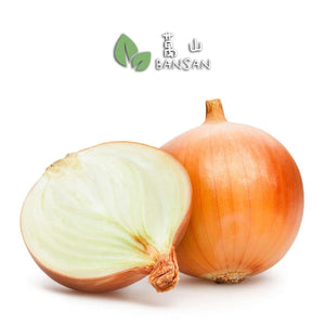 Penang Grocery Store Online Next Day Delivery is Offering Holland White Onion 荷兰白洋葱 (±1 kg)