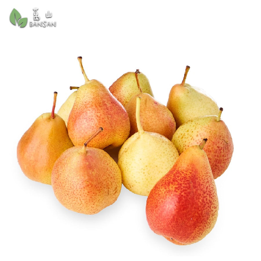 Penang Grocery Store Online Next Day Delivery is Offering South Africa Forelle Pear 南非小蜜糖耙 (+/-800g)