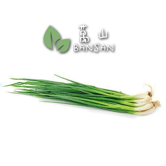 Penang Grocery Store Online Next Day Delivery is Offering Spring Onion 青葱 (±200g)