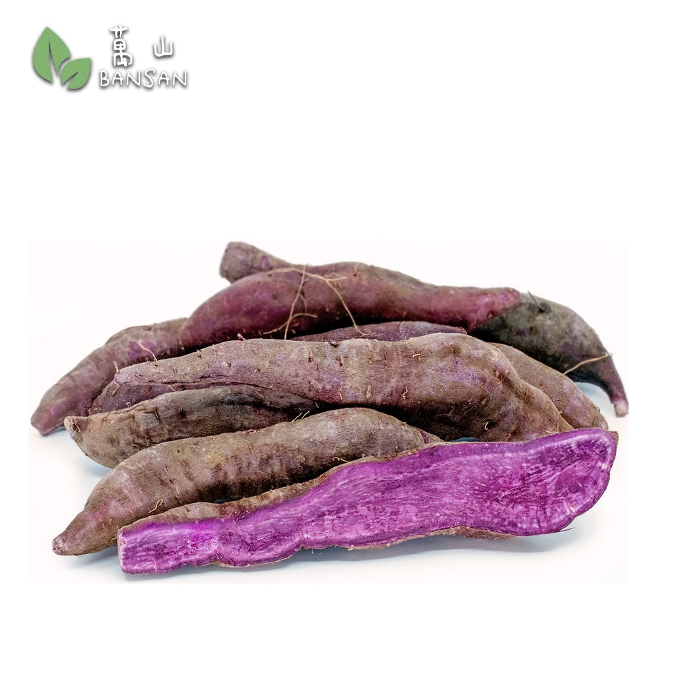 Purple Sweet Potatoes (+/-900g) - Bansan Penang