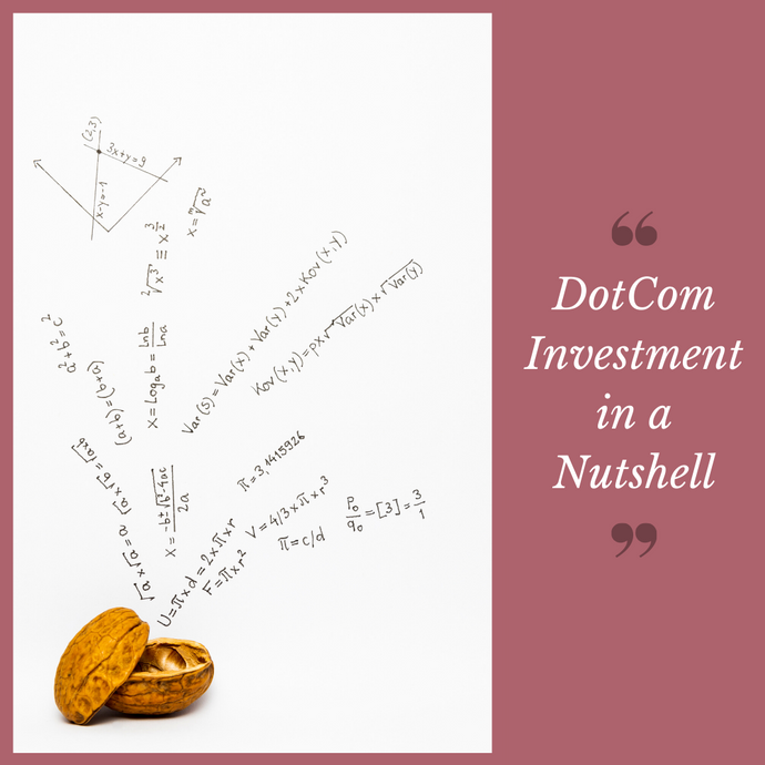 DotCom Investment in a Nutshell