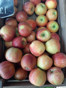 Apple /s (BraeBurn or Royal Gala) available as  Singles or x3