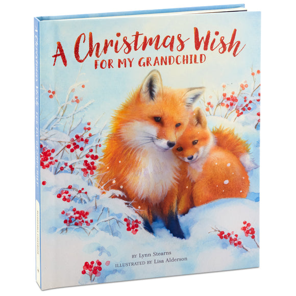 Hallmark A Christmas Wish for My Grandchild Recordable Storybook