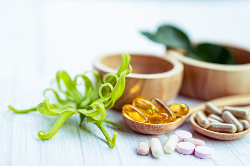 How Do Vitamin E Supplements Boost the Body's Immunity?