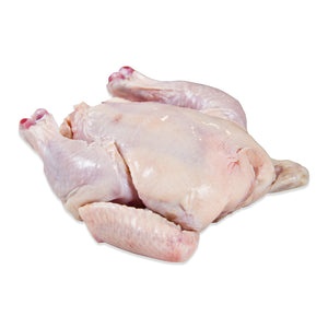 WHOLE POUSSIN