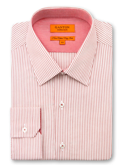 Warren Stripe Shirt