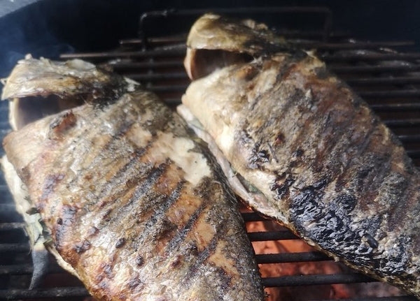 Grilled Seabream & Tapenade