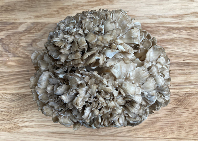 Maitake (4 Recipe Ideas!)