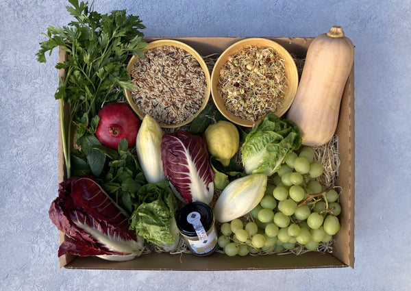 NEW - Autumn Salad Box