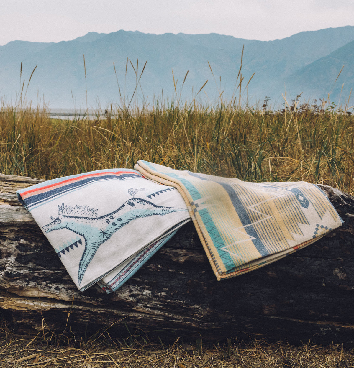 Two blankets stacked on a log in a field with mountains in the background.