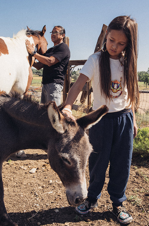A young girl pets a small donkey at a farm.