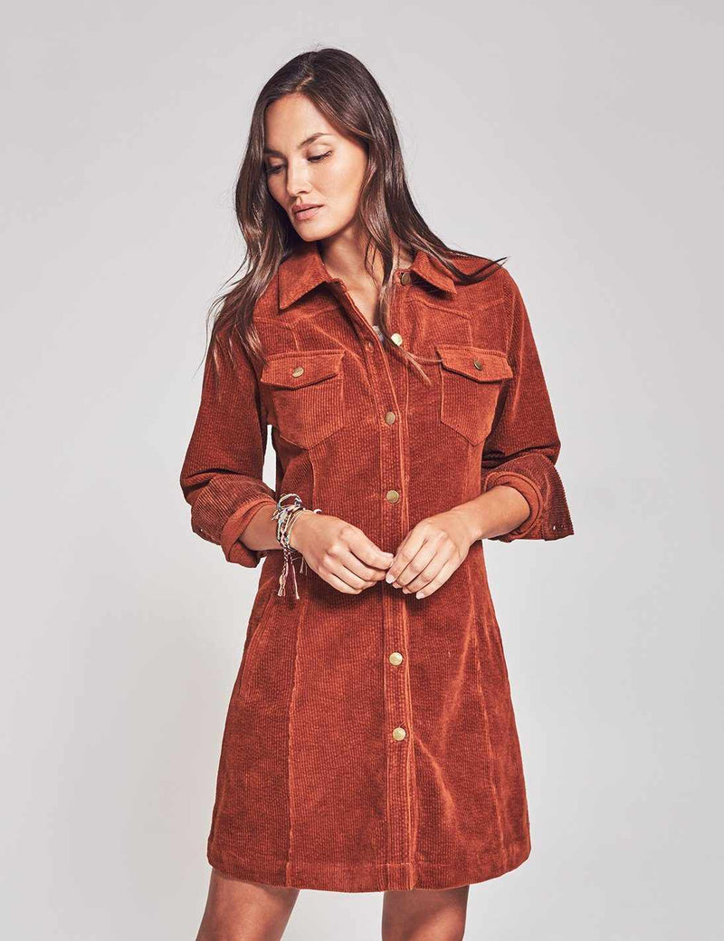 Malone Shirtdress - Harvest