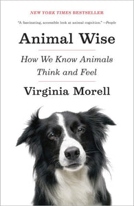 Animal Wise