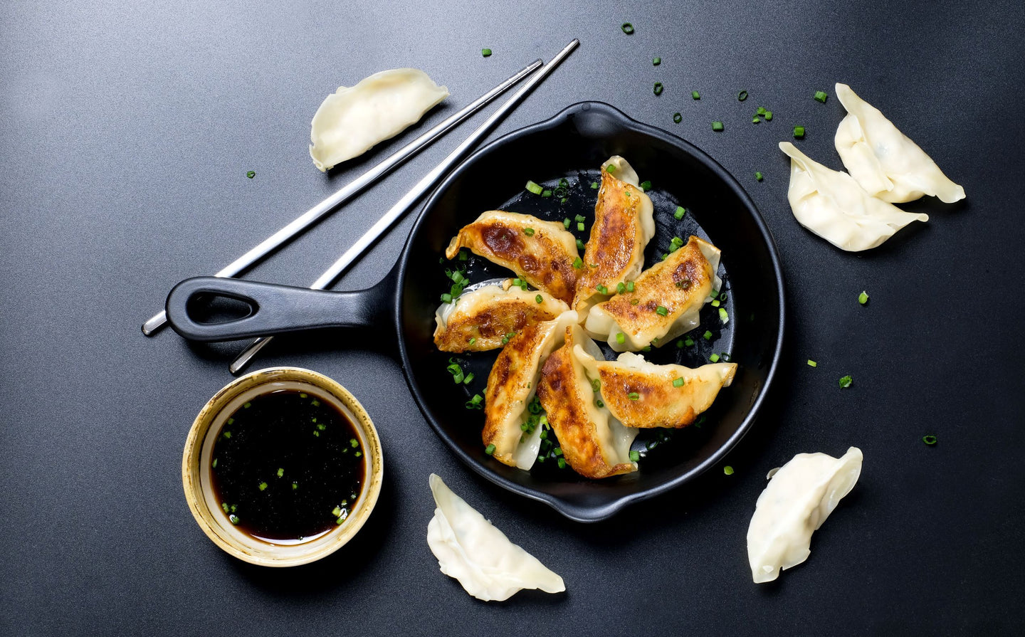 Chicken and Vegetable Gyoza