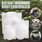 #1 Plant Root Growing Box