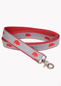 Curly Tail Dog Leash