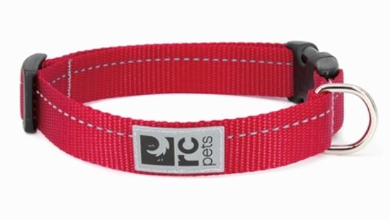 RC Pet Primary Collars & Leashes