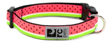 RC Pet Clip Collar