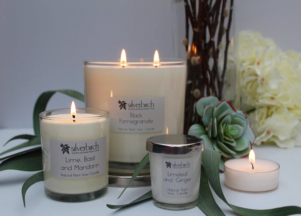 Limeleaf & Ginger Candles