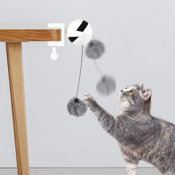 Cat Toy Auto Lifting Ball
