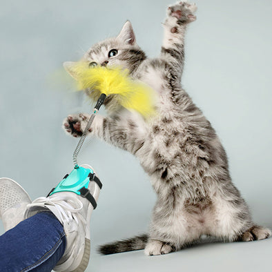 Cat Feather Wand Toy