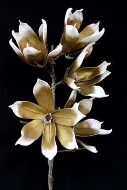 Bronze And White Foam Flower Blooms
