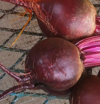 Beets | Betteraves - 2.75lbs