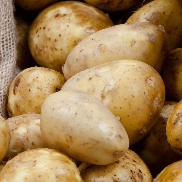 Potatoes, No-Spray (3lb small-medium)