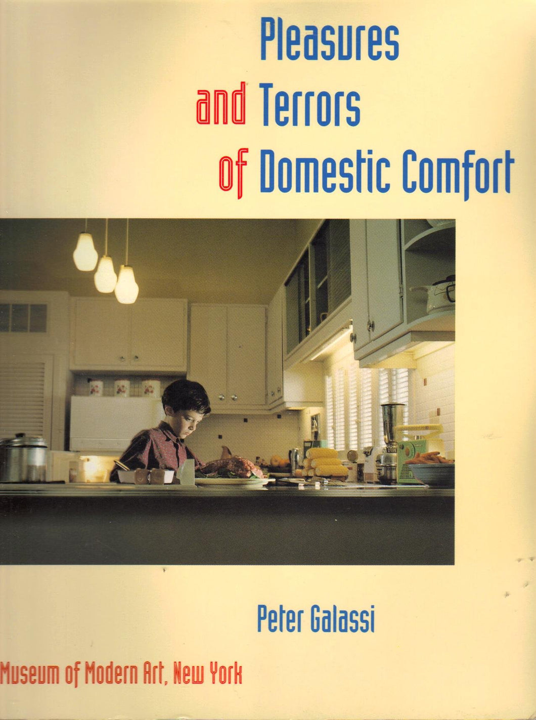 The Pleasures and Terrors of Domestic Comfort by Peter Galassi