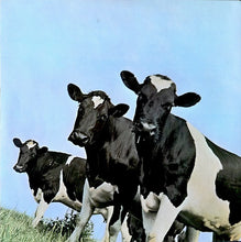 Load image into Gallery viewer, Vinyl LP: Pink Floyd-Atom Heart Mother