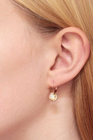 Classic Swarovski Lever Back Earrings - Medium