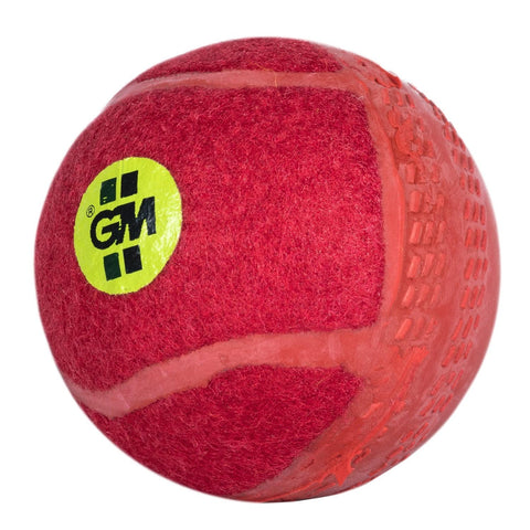Gunn & Moore Swingking Cricket Ball