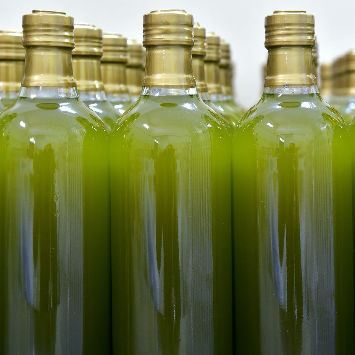 Is the fraudulent olive oil industry's biggest problem? | Marqt.no