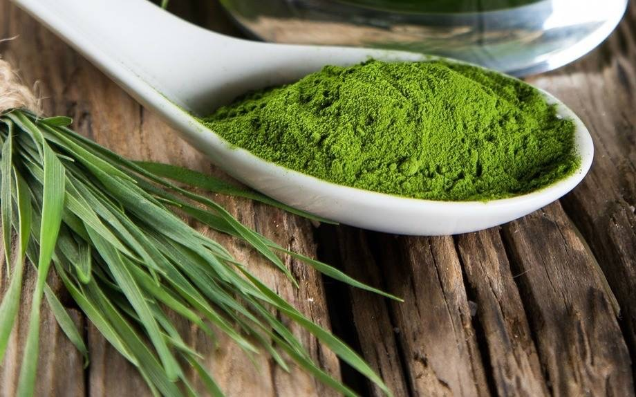 liquid sun wheatgrass