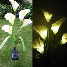 Load image into Gallery viewer, Spring Artificial Lily Solar Garden Stake Lights(1 Pack of 5 Lilies)