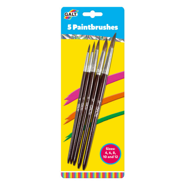 Paintbrushes 5 Pack