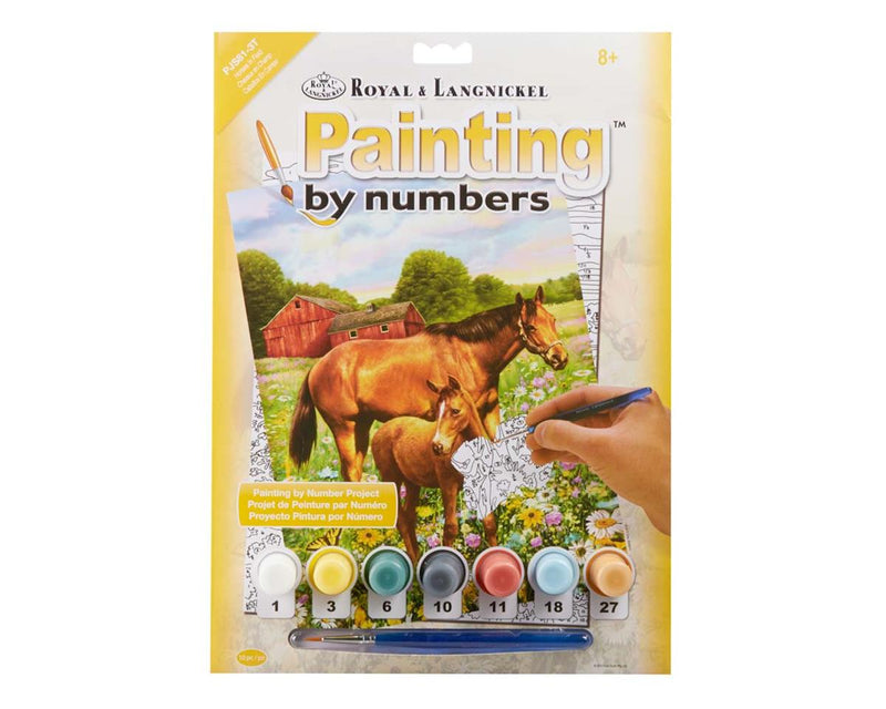 Paint By Numbers Horse
