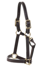 Load image into Gallery viewer, HUNTLEY LEATHER HALTER