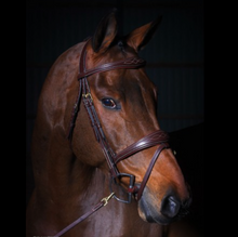 Load image into Gallery viewer, DYON ANATOMIC FANCY STITCH FLASH NOSEBAND