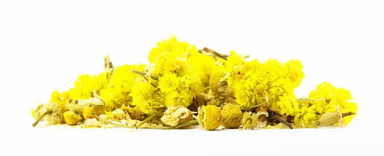 Egyptian Chamomile Flowers - Jenwey Tea
