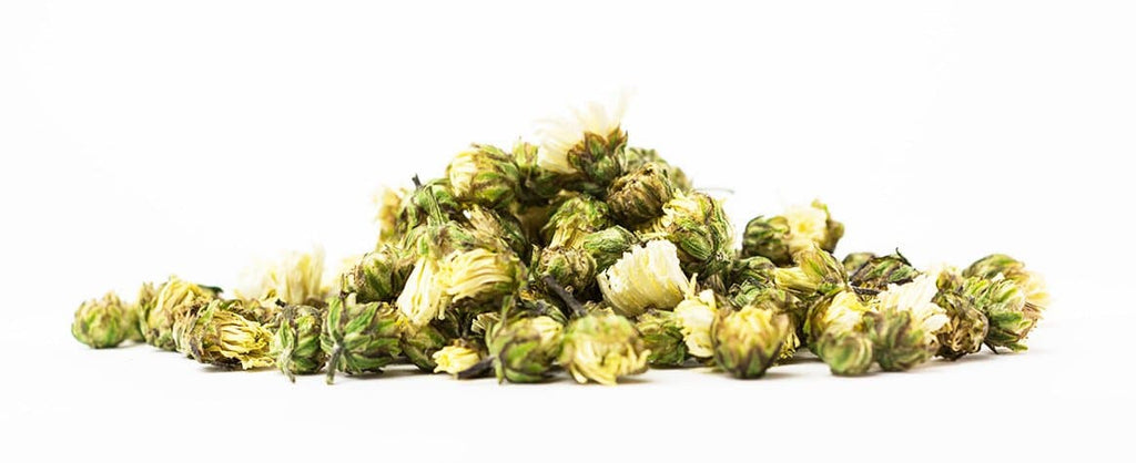 Chrysanthemum Bud - Jenwey Tea