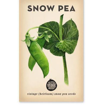 Little Veggie Patch Co Heirloom Seeds - Snow Pea 'Oregon'