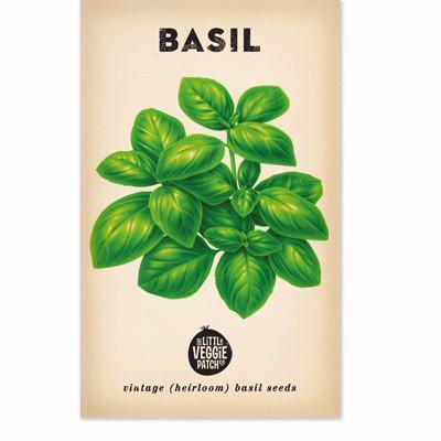 Little Veggie Patch Co Heirloom Seeds - Basil 'Large Sweet Genova'